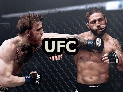 UFC 2 Online